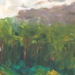 paysage de forets dans la montagne du Buech