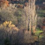 couleurs d'automne dans le vallon du Riou